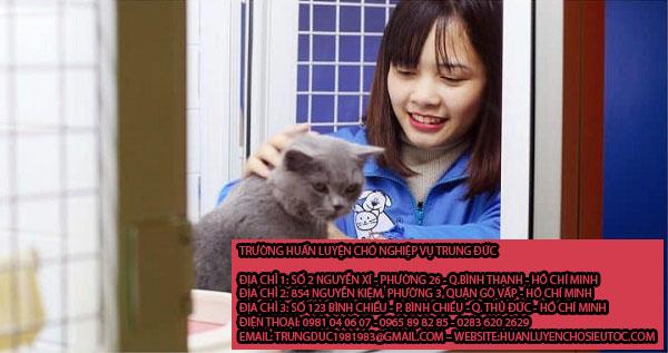 Giữ chó mèo Quận Bình Thạnh