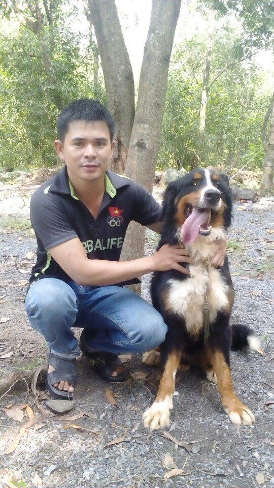 Dịch vụ huấn luyện chó cảnh uy tín giá rẻ nhất