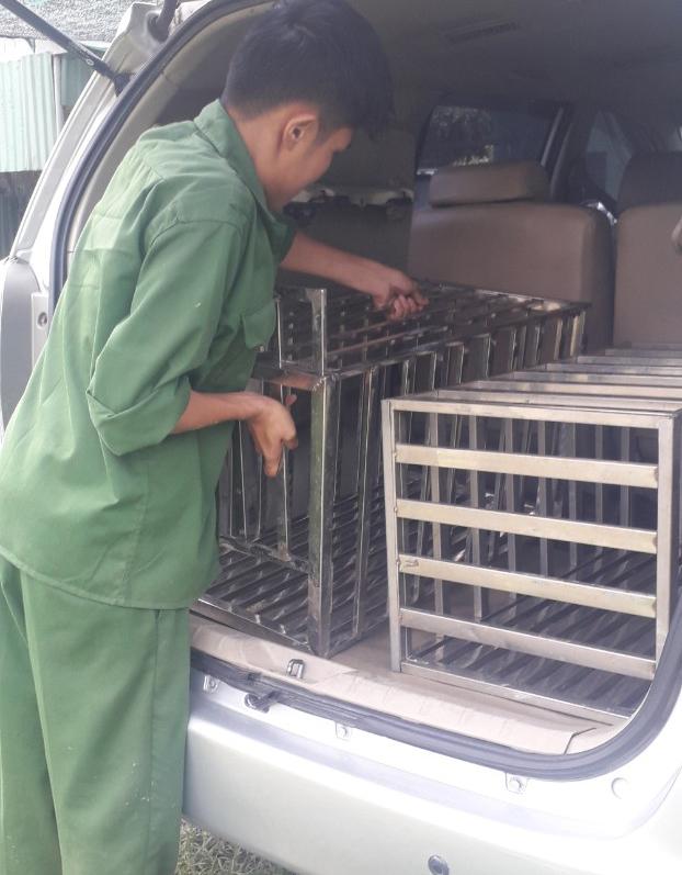 Nhận chăm sóc, nuôi dưỡng chó ngày lễ, tết tại Tp.HCM, Bình Dương, Đồng Nai