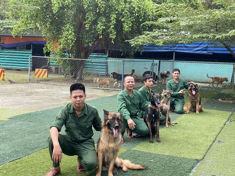 huấn luyện chó